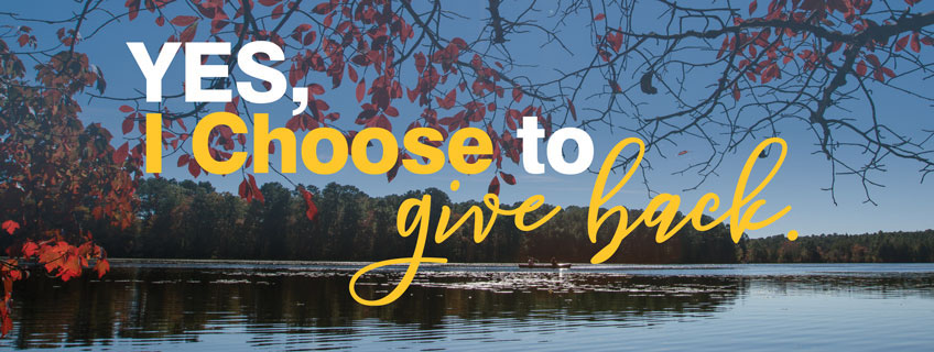 Support Stockton Give a gift header image